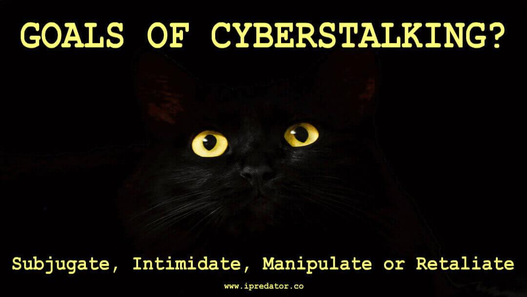 michael-nuccitelli-cyberstalking-64
