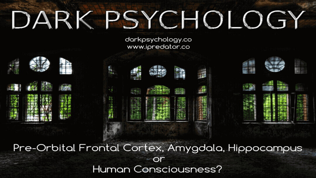 michael-nuccitelli-dark-psychology-image-19