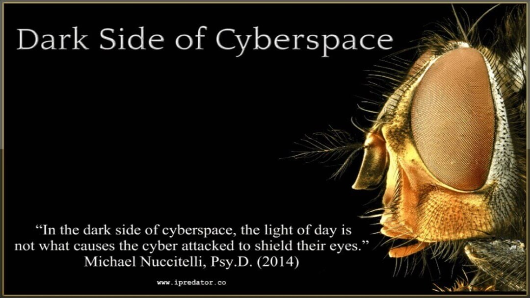 michael-nuccitelli-dark-side-of-cyberspace-ipredator-14
