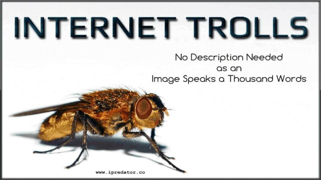 michael-nuccitelli-internet-troll-image-10