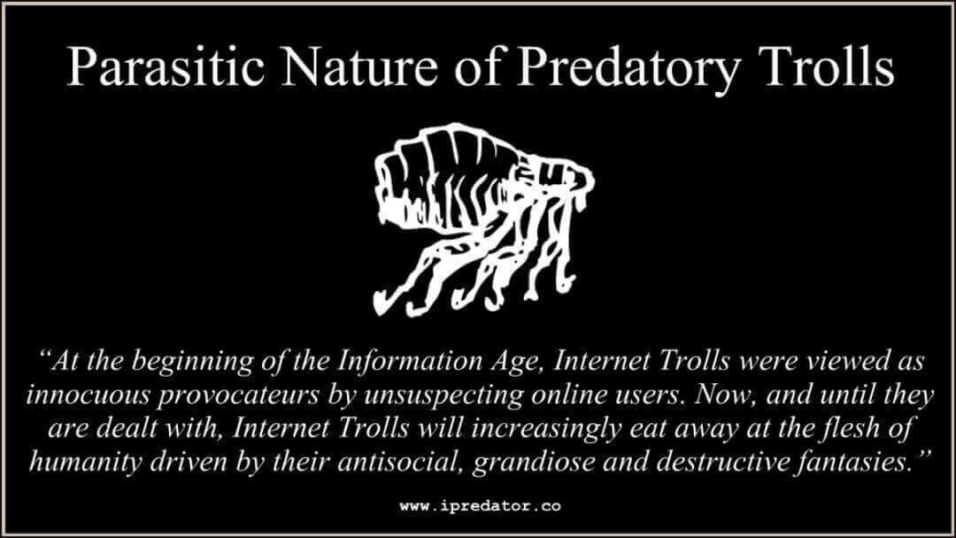 michael-nuccitelli-internet-troll-image-53