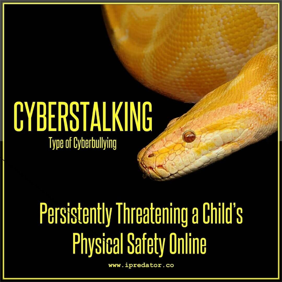 michael-nuccitelli-ipredator-cyberstalking-19