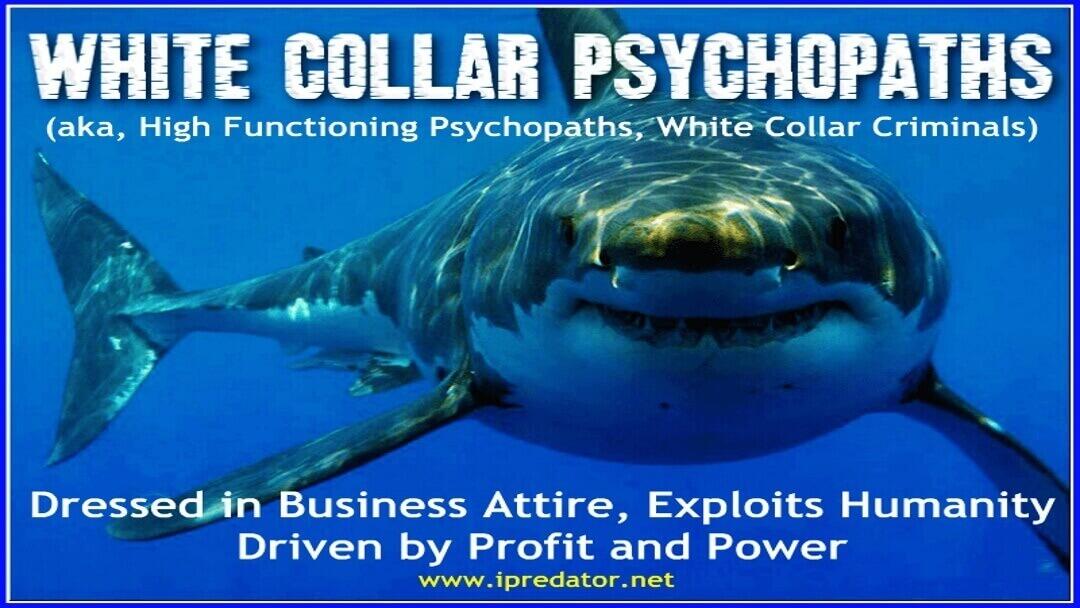 michael-nuccitelli-online-psychopath-image-68