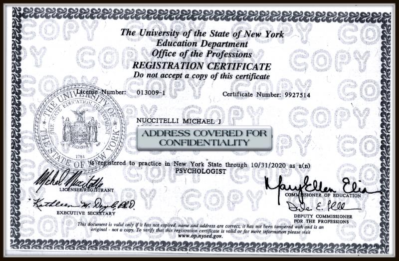 Michael Nuccitelli, Psy.D.-NYS Psychologist License - 2020